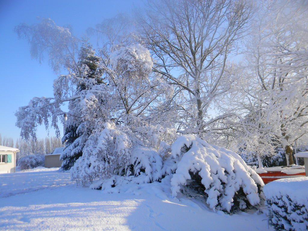 Tous sous la neige - La ren des neige ...