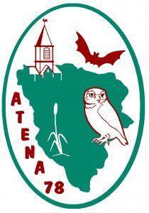 atena78