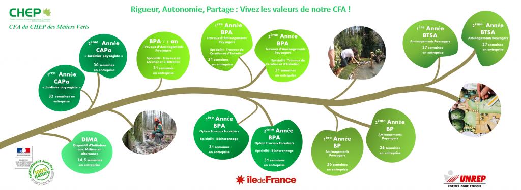 Filière CFA et ses formations