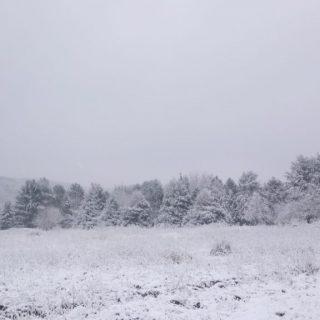 le chep l'hiver