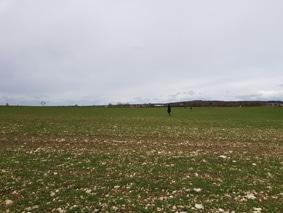 Comptage des perdrix grise - filière Nature et environnement