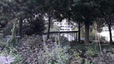 Visite du jardin de l'Atlantique par les Bac pro Forêt et Aménagement paysager