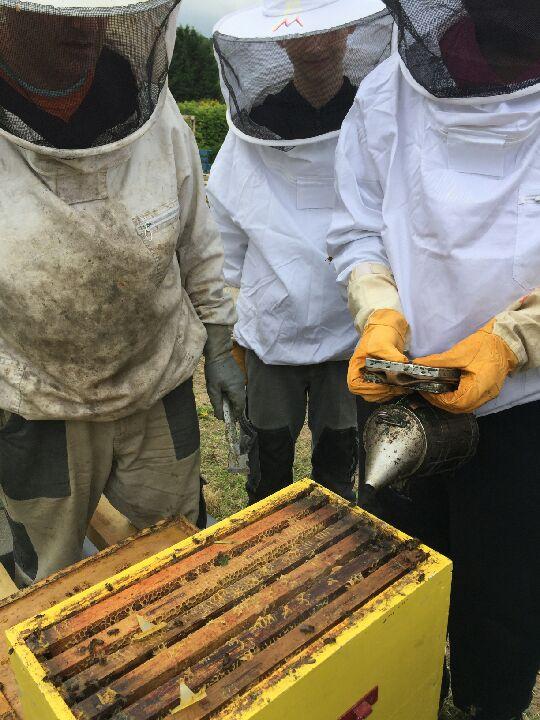 Formation apiculture au CHEP mars 2020