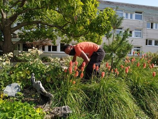 Nettoyage du campus 2020