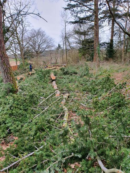 classe de BP A Travaux forestiers a mené un  chantier école à La Boissière-Ecole