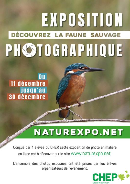 exposition de photographies animalières virtuelles BTS GPN 2
