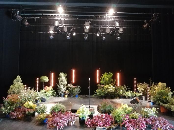 décor du concert Barbacane le 20 novembre 2020.