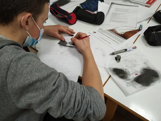 La classe de 4e/3e participe à un concours sur la chauve-souris