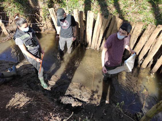 Les BTS GPN 2 évaluent la qualité de l'eau d'une rivière