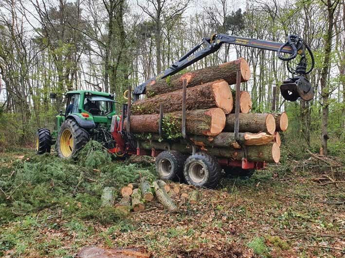 Chantier filière forêt